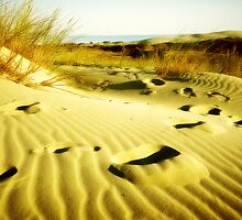 Golden Dunes by 4Seasons