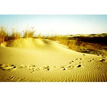 Golden Dunes Photographic Print