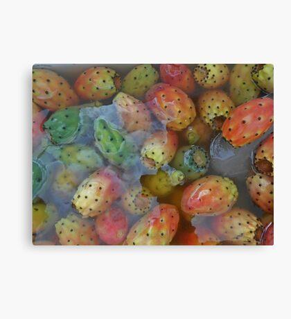 Kaktüs meyvası Canvas Print