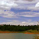 Day at the lake by Anita Schuler