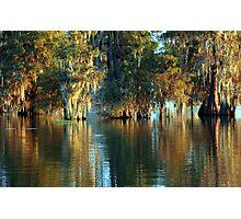Cypress Bayou Photographic Print