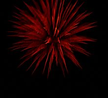 Red Firework by ChereeCheree