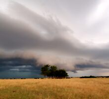 The Winds Sweeping Down the Plains by shazie