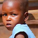 CHILDREN OF AFRICA , THE YOUNG AND THE OLD SERIES by Magriet Meintjes