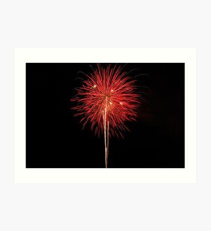 Red Bloom Art Print