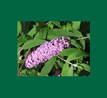 Buddleia Basking in the Sunshine Womens Fitted T-Shirt