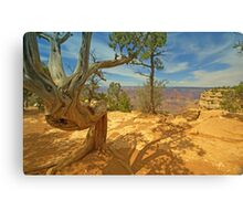 Nature`s Art Canvas Print