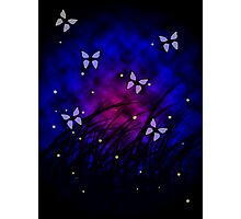 Butterflies at Night Photographic Print