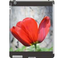 Two-Tone Red Tulip iPad Case/Skin