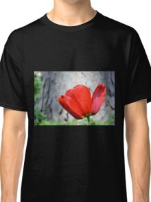 Two-Tone Red Tulip Classic T-Shirt