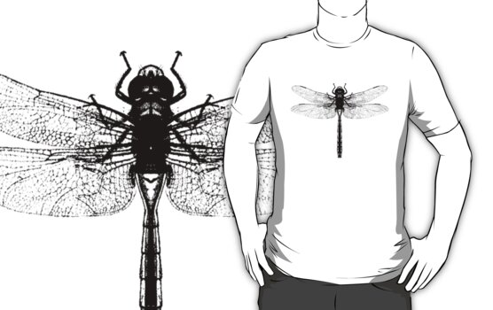 Black Dragonfly by Zehda