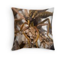 robber fly (asilidae family) Throw Pillow