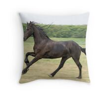 Perfectly captured friesian horse Throw Pillow