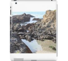 Rocky coastline iPad Case/Skin
