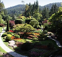 The Sunken Garden by NoahC