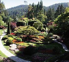 The Sunken Garden by NoahC