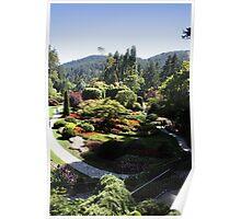 The Sunken Garden Poster