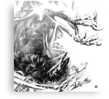Senescent 6 - charcoal drawing Canvas Print