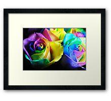 Rainbow Roses 12 Framed Print