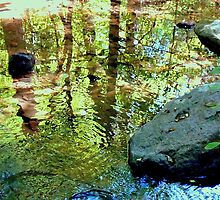 Nature's Reflection   ^  by ctheworld
