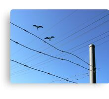 Fly By Wire. Canvas Print