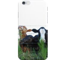 The Three MOOsketeers  iPhone Case/Skin