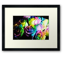 Rainbow Roses 15 Framed Print