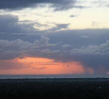 Rain approaching. by elphonline