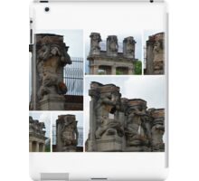 The Races of Man iPad Case/Skin