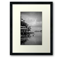 frothy coffee pelican stop Framed Print