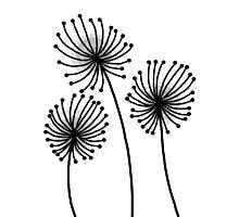 Flower Pattern No. 1 Photographic Print