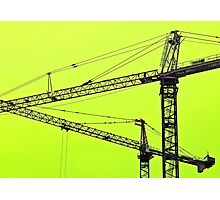 Crane Dance Photographic Print