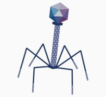 Bacteriophage by nucleotides