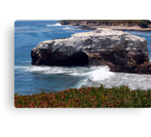 Natural Bridges State Beach Canvas Print
