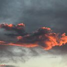 Flame in the Sky by Winona Sharp