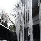 Icicles  by staceerose