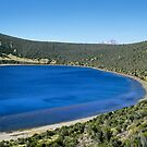 Lake Alice by David Clarke