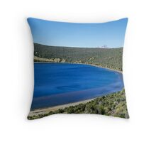 Lake Alice Throw Pillow