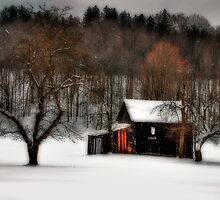 In Winter's Grip by Lois  Bryan