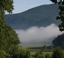 Misty Morn by Sherri Hamilton