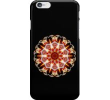 And the Spell is Cast iPhone Case/Skin