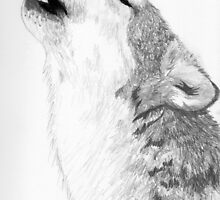 Wolf Howl by katehoff