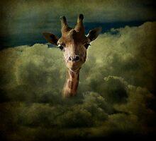 cute girafe by jipihope