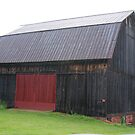 Rustic Red old Barn in Pa.hill country! by Ruth Lambert