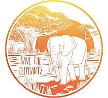 Save the Elephants! Photographic Print