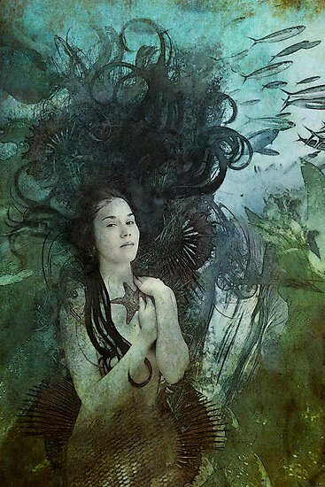 Wished Upon by Aimee Stewart