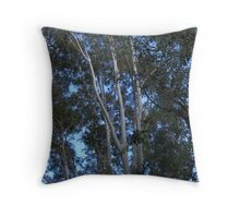 Trees, Branches, Leaves and Blue Sky in Late Afternoon Light Throw Pillow