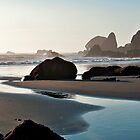 Lone Ranch Beach So. Oregon by ShutterlyPrfct