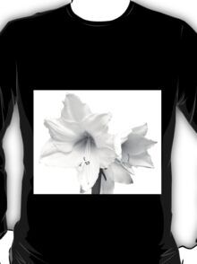White Amaryllis Flower T-Shirt