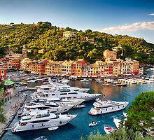 Portofino Harbor in a Summer Afternoon by George Oze